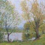 Autumn Godmanchester Lakec